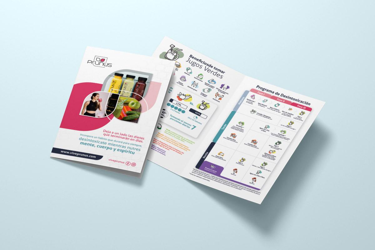 Brochure Prunus