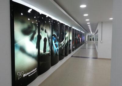 Biotecnología Caja de Luz