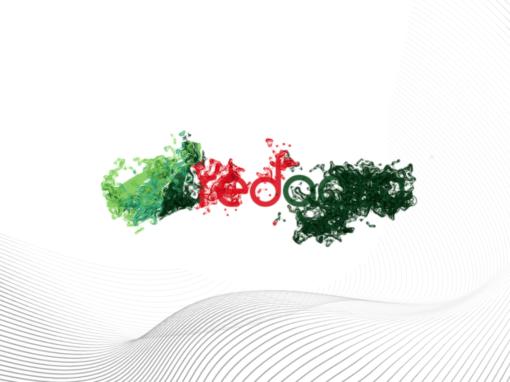 Video Logo Reveal